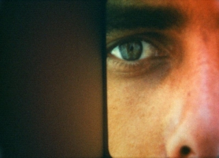 Beavers-StillLight-5