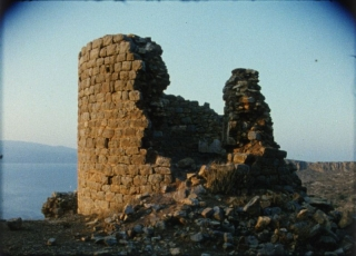 Beavers-TheGround-4